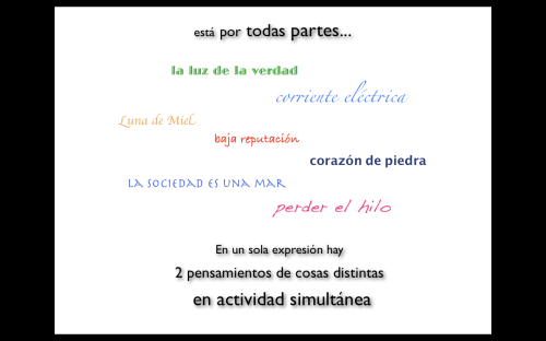 Imagen 23
